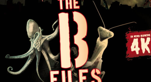 The B Files (Series)