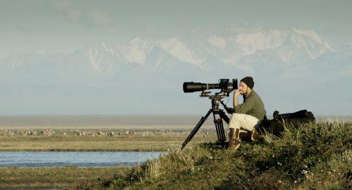 The Arctic (wt) – IMAX